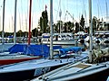 Bol d'Or 2009 - Preparation - panoramio (1).jpg