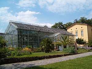 Botanical Garden, Potsdam - Palm house