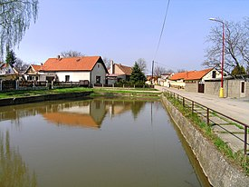 Brázdim, Common Pond.jpg