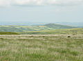 Brent Hill from Ugborough Moor.jpg