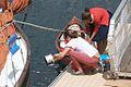 Brest2012 - Vaisselle.jpg
