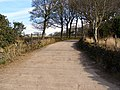 Bridlepath to Harwood Fields - geograph.org.uk - 1756328.jpg