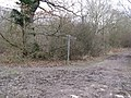 Bridleway junction in Woodshill Copse - geograph.org.uk - 1196898.jpg