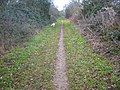 Bridleway towards Clothall - geograph.org.uk - 95070.jpg