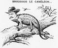 Broussais le caméléon (Le Tirailleur algérien, 1899-11-26).jpeg