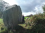 Bryn Gwyn stones, large adult in front of slab stone, 11102009.JPG