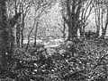 Buchenwald mit Hünengrab 01.jpg