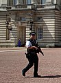 Buckingham Palace Security (14752313612).jpg
