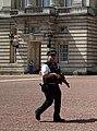 Buckingham Palace Security (14752313612).jpg