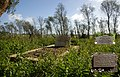 Budgerum Cemetery. A grave. Two Generations. Two Lives. Two centuries. - panoramio.jpg