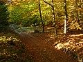 Bukowina 1 - panoramio.jpg