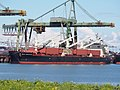 Bulk Endurance (ship, 2016) IMO 9782003, Mississippihaven, Port of Rotterdam pic3.jpg