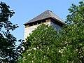 Burg Kaprun 07.JPG