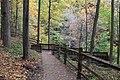 Buttermilk Falls - panoramio (19).jpg