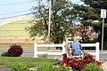 CDTA bus stop in Glenville, New York.jpg