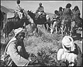 CH-NB - Afghanistan, Bala Murgab (Bala Murghab, Morghab)- Menschen - Annemarie Schwarzenbach - SLA-Schwarzenbach-A-5-20-052.jpg