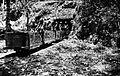 COLLECTIE TROPENMUSEUM Mangaanerts-ontginning lorrievervoer TMnr 10007063.jpg