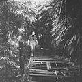 COLLECTIE TROPENMUSEUM Militair betreedt een vervallen brug in het bos TMnr 10028459.jpg