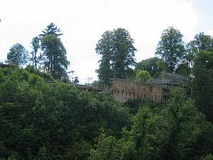 Cadzow Castle - Cadzow Castle, seen across the Avon Gorge from the Duke's Bridge