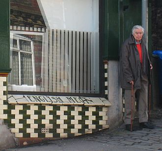 """Richard Gregory - Gregory outside the café on St Michael's Hill, Bristol, which inspired his (re-)discovery of the """"café wall illusion"""", February 2010"""