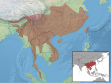 Callosciurus erythraeus distribution.png