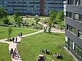 Campus der Europa-Universität Flensburg.jpg