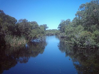 Canning River (Western Australia) - Canning River without the Azolla in February 2006.