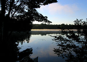 Canoe camping - morning.jpg