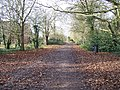 Cantley - geograph.org.uk - 21516.jpg