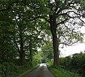 Canwell Estate, Brick Kiln Lane - geograph.org.uk - 432842.jpg