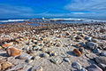 Cape of Good Hope Beach 2.jpg