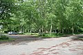 Car park, Bestwood Country Park - geograph.org.uk - 1340328.jpg