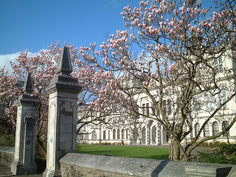 File:Cardiff University.JPG