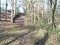 Carters Lodge Lane - panoramio (4).jpg