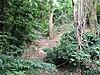 Fosse à craie de Catton Grove