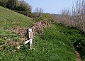 Caution - badger holes ahead - geograph.org.uk - 1271305.jpg