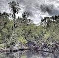 Cenote (4189973391).jpg