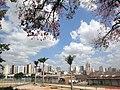 Centro da Cidade de Catanduva - panoramio.jpg