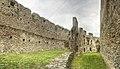 Cetatea din Câlnic 3.jpg