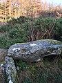 Chambered cairn 350m East of Woodhead.jpg
