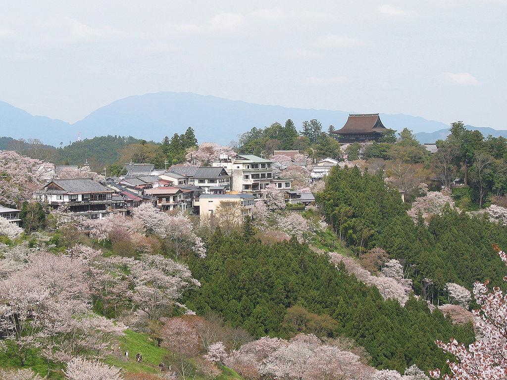 Cherry blossoms at Yoshinoyama 01.jpg