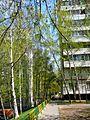 Chertanovo Severnoye District, Moscow, Russia - panoramio (26).jpg