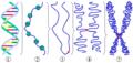 Chromatin chromosome.png