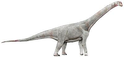 Chubutisaurus.jpg