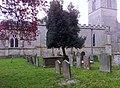 Churchyard, St, Guthlac's - geograph.org.uk - 1011247.jpg