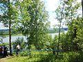 Chusovskoy r-n, Permskiy kray, Russia - panoramio (111).jpg