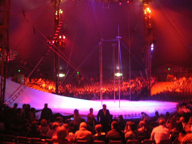 go to a cirque show during your las vegas trips