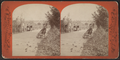 Cleft Ridge Span, distant view, from Robert N. Dennis collection of stereoscopic views.png
