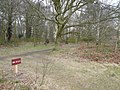 Clumber Park - Footpath View - geograph.org.uk - 707240.jpg