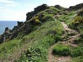 Coast path above Outer Froward Point - geograph.org.uk - 817716.jpg